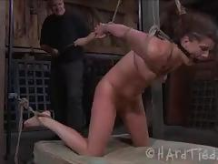 Cute cici rhodes bdsm tortured