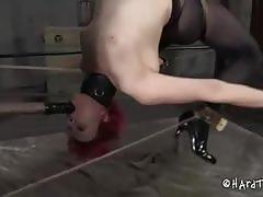 Claire adams tortured in cage