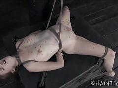 Ashley lane's extreme pleasuring show