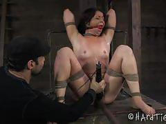 """x marks the spot"" with mia gold in hard tied."