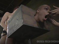 Black babe gets her tight cunt fucked in bondage.