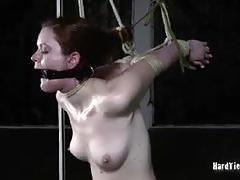 milf, babe, pussy, bdsm, bondage, big ass, toys, huge dildo, dildo, tight pussy, forced, slave, shaved pussy, gorgeous, beauty, whip, amateur, fetish, first time, spanking