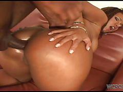 Black babe aninha does anal with her cocky stud