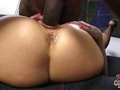 Gemma more assfucked by black cock