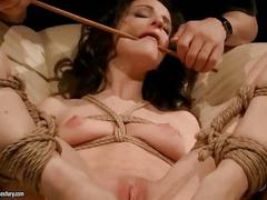Sexy slavegirl gest punished and fucked