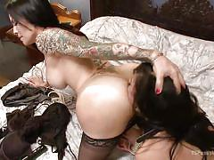 stockings, collar, brunette babe, shemale big boobs, shemale ass licking, fucked from behind, tranny babe, ass spreading, tattooed shemale, ts pussy hunters, kink, beretta james, ts foxxy