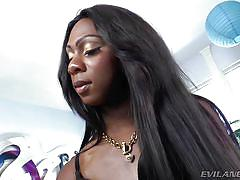 solo, stripping, ebony shemale, small breasts, tranny babe, white nails, stroking dick, shemale brunette, she male big dick, i love black shemales, evil angel, kourtney dash