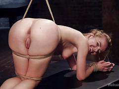 Alina gets bonded by severe executor