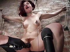 bdsm, punishment, domination, vibrator, tied up, suspended, brunette babe, ball gag, rope bondage, hogtied, kink, the pope, ingrid mouth