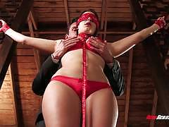 Valentian nappi tied and fucked