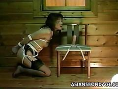 Asian babe tied and blowing cock