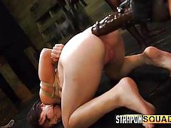 Couple of horny lesbians play with naked slave