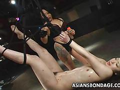 Sexy brunette babe very nasty bdsm