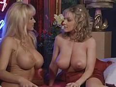 3960500 danni ashe topless talk