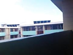 amateur, blowjob, public, verified amateurs, balcony-bj, public-sex, cum-in-mouth