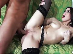 tiffany doll, brunette, hardcore, babe, pussy, stockings, girlfriend, gorgeous, beauty, pantyhose, ex-girlfriend, black hair, spoon, fishnets, female friendly, missionary