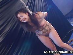 Dominated asian in bdsm