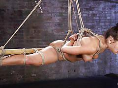 Hogtied slut has her nipples clamped