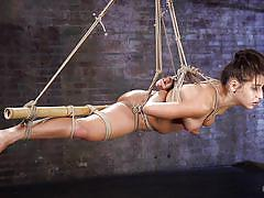 domination, hogtied, sex slave, suspended, brunette babe, executor, nipple clamp, rope bondage, foot torture, hogtied, kink, abella danger, the pope