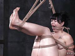 small tits, bdsm, tied, rope bondage, dildo on a stick, black haired babe, hard tied, jack hammerx, siouxsie q