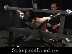 Submissive ass slapping wax abuse