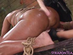 Bondage lovnig babes bang a tanned slut with a dildo