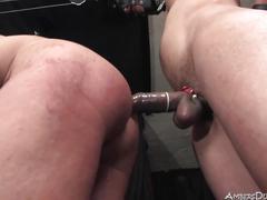 bdsm, bisexuals, bondage, femdom, hd videos, strapon