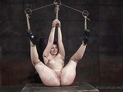 bdsm, high heels, tied, sex toy, brunette babe, nipple clamps, rope bondage, real time bondage, harley ace