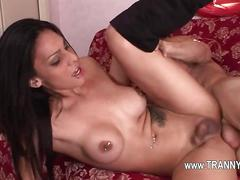 Phenomenal transsexual banging sex