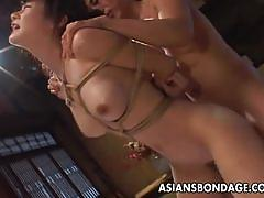 Fucking her while tied up