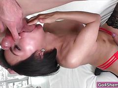 blowjob, bareback, handjob, masturbation, shemale