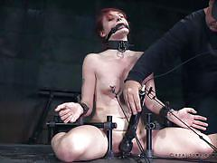 The executor gets two gingers restrained