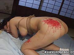Dominated asian enjoys bdsm