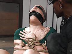 bdsm, interracial, whipping, blindfolded, brunette babe, ball gag, on the floor, rope bondage, hard tied, hard tied, jack hammerx, kel bowie