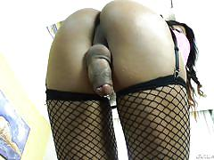 shemale solo, shaved ass, shemale masturbation, brunette shemale, fishnet stockings, shemale idol, evil angel, duda lopez