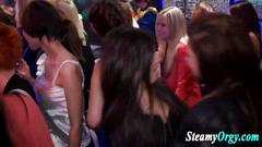 blowjob, party, amateur, strip, amateurs, hd, striptease, club, parties, stud