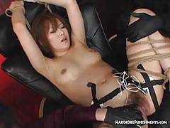 Bound amateur toyed