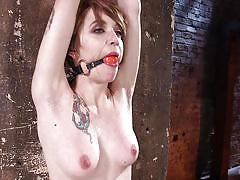 bdsm, babe, redhead, busty, hogtied, vibrator, fingering, tattooed, ball gag, hogtied, kink, jeze belle