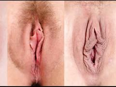 Tipos de bucetas
