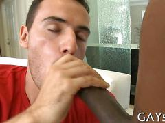 Taste of the cock porn