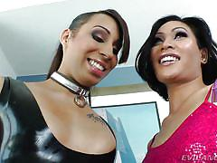 Two naughty tranny babes having fun