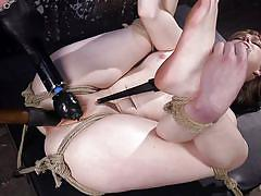 bdsm, babe, hogtied, dildo, vibrator, fingering, rope bondage, hogtied, kink, dolly leigh, the pope