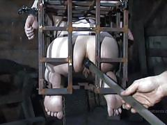 Caged and humiliated felonie