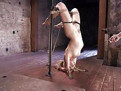blonde, bdsm, babe, pussy torture, upside down, clothespins, device bondage, rope bondage, slapping pussy, hogtied, kink, dahlia sky