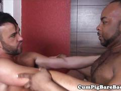 Mature bear barebacking in interracial trio