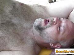 blowjob, bareback, bear, fucking, sucking, fat, hairy, oral, pool