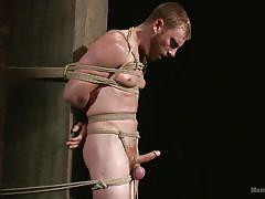 Bound gimp gets wanked