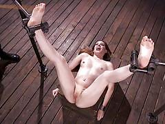 Bobbi dylan was tied and tortured