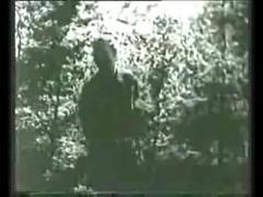 Voyeur en el bosque