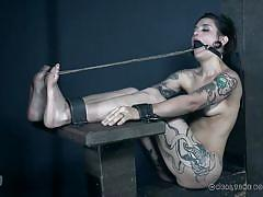 bdsm, babe, torture, piercing, brunette, tattooed, ball gag, device bondage, rope bondage, real time bondage, eden sin, luna lovely